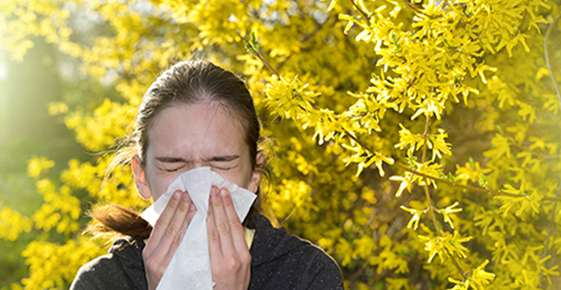 Allergy Management and Your Eyes